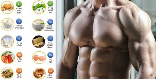 How Much Protein Do You Need To Increase Muscle Mass?