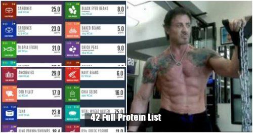40+ Foods That Are Rich in Protein (Vegan + Non Vegan)