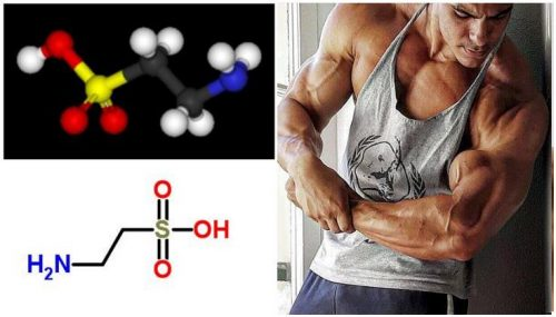 What is Taurine: Positive and Negative Effects of Taurine